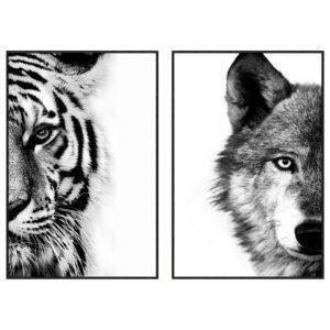 tableau-impression-sur-verre-animaux-tigre-loup-design-drimmer-decoration-boisetdeco-nord