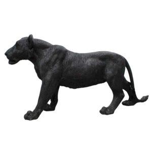 lion noir mat